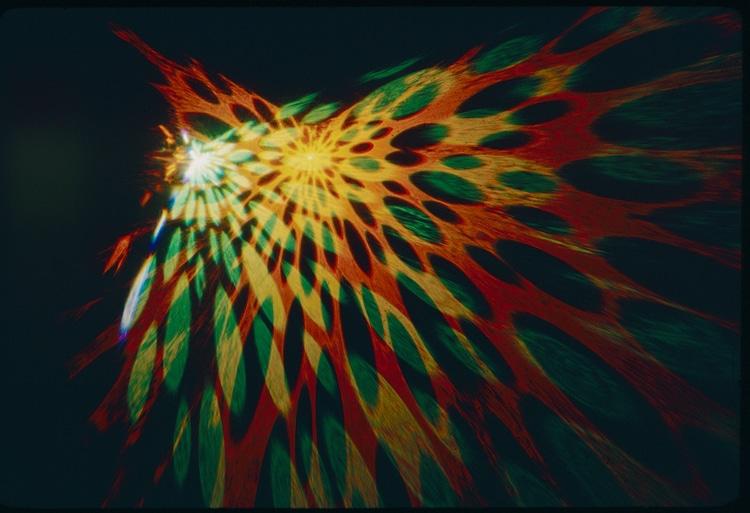 27 upisdown goldsholl lenstar slide